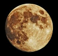 C.O.L. Moon